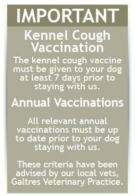 Ensure all your pet vaccinations are in order